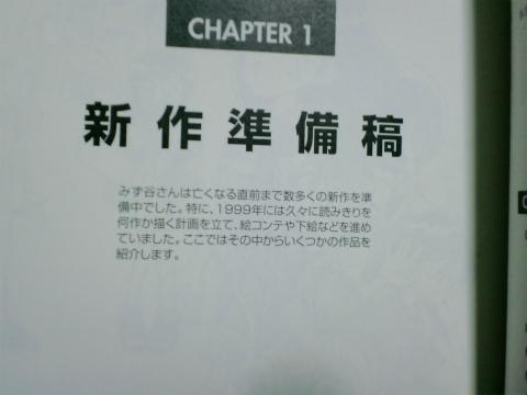 CA3C0353.jpg