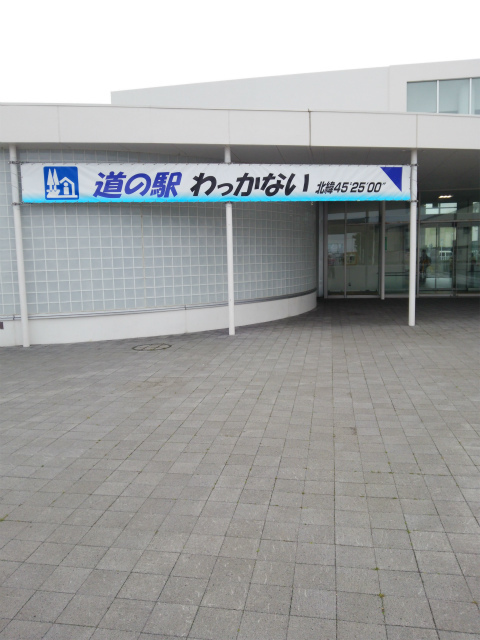DSC_0804.jpg