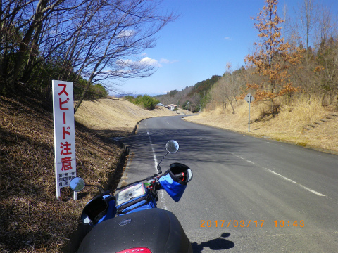 IMGP3444.jpg