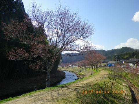 IMGP3469.jpg