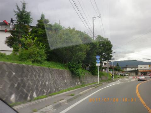 IMGP4704.jpg