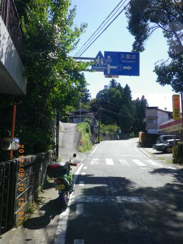 IMGP4906.jpg