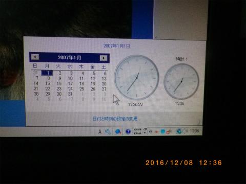 IMGP3100.jpg