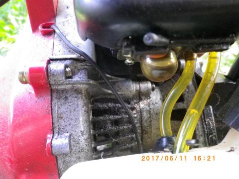IMGP4028.jpg