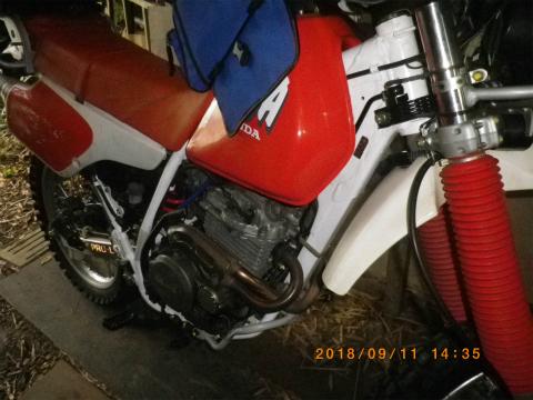 IMGP9661.jpg